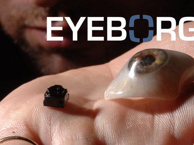 ¿Cuándo se fabricó el primer ojo biónico equipado con cámara?