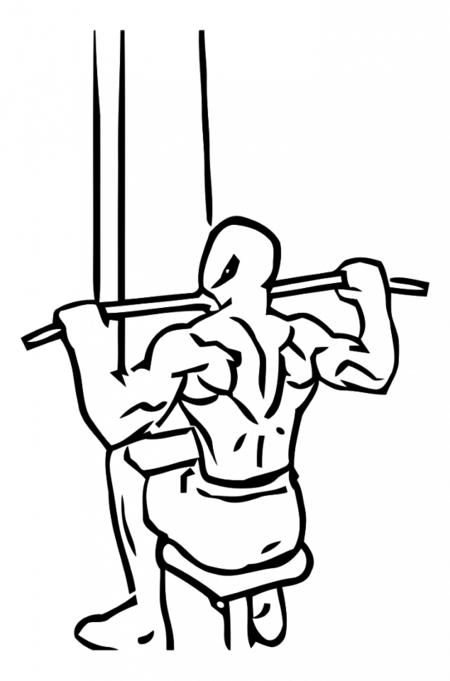 Máquinas y ejercicios de espalda I