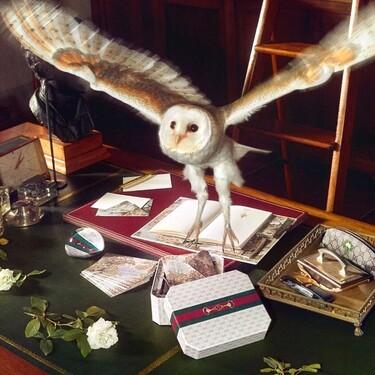 La vuelta al cole más lujosa nos la propone Gucci con su colección más ideal de libretas, lápices, estuches...
