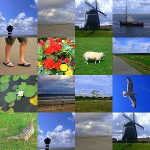 Cómo crear un collage con tus fotos de viaje