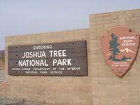 América en moto. El Parque Nacional de Joshua Tree
