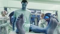 ¿'Avatar' es un plagio?