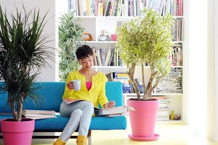 Con estos consejos de Interflora para cuidar tus plantas en primavera y en verano tu casa parecerá un vergel