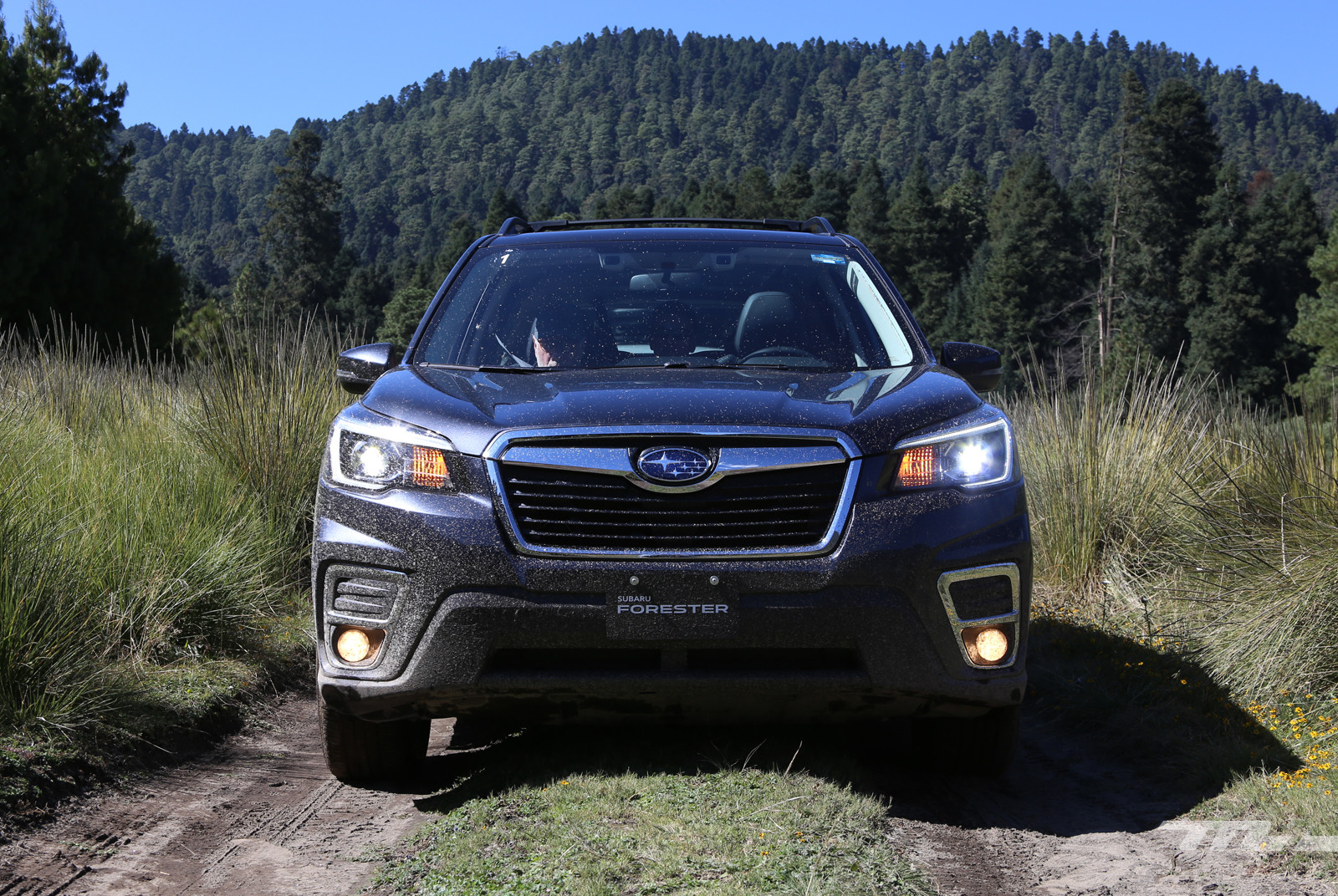 Foto de Subaru Forester 2019 (lanzamiento en México) (8/25)