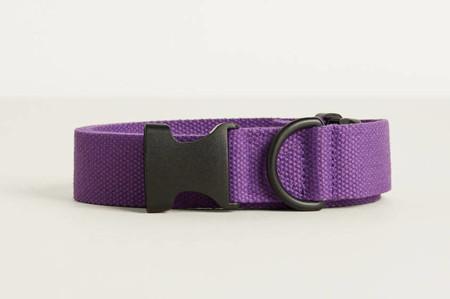 Bershka Nos Presenta Su Primer Color Clave Para La Primavera El Purpura