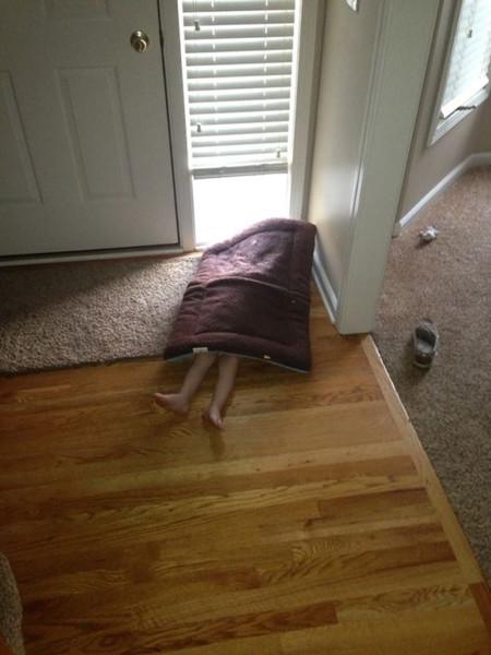 ¿Has visto la nueva alfombra?