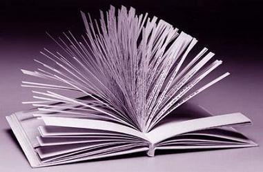 El libro más extenso del mundo