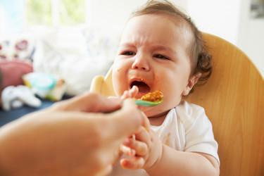 ¿Tu bebé rechaza probar nuevos alimentos? No lo presiones