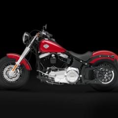 Foto 4 de 9 de la galería harley-davidson-fls-softail-slim en Motorpasion Moto