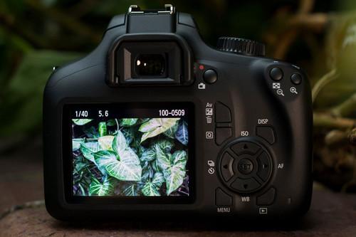 Canon EOS 4000D, Nikon D750, Sony A7 II y más cámaras, objetivos y accesorios en oferta: Llega Cazando Gangas