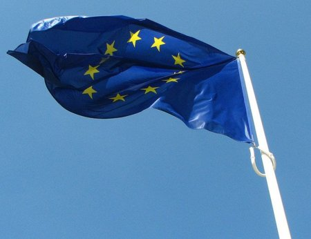El partido verde europeo afirma que el ACTA viola derechos humanos fundamentales