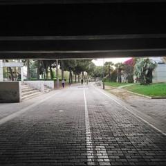 Foto 31 de 50 de la galería fotos-tomadas-con-el-sony-xperia-xa2-ultra en Xataka Android