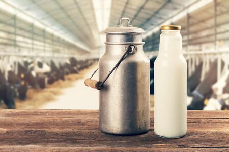 Seis alimentos aptos para veganos con más calcio que la leche