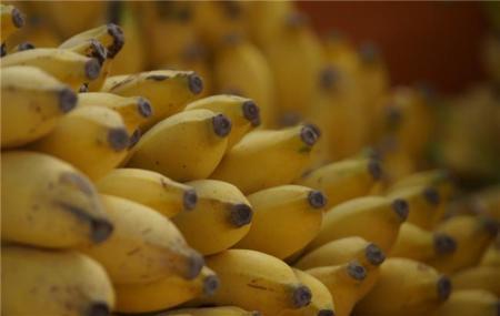 Estos plátanos supervitaminados pueden salvar millones de vidas en África