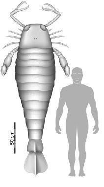 Un escorpión Prehistórico, más alto que una persona