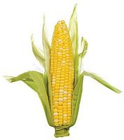 ¿Y tú de qué eres, de arroz, de trigo o de maíz?