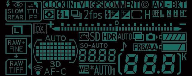 D600 LCD