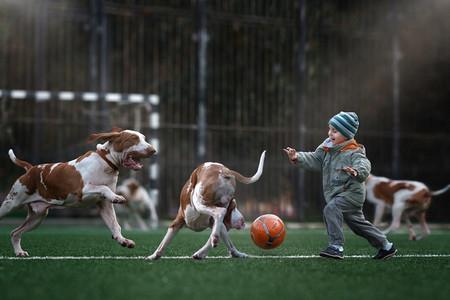 perrosyniños15
