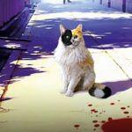 'Los misterios de la gata Holmes', de Jirō Akagawa