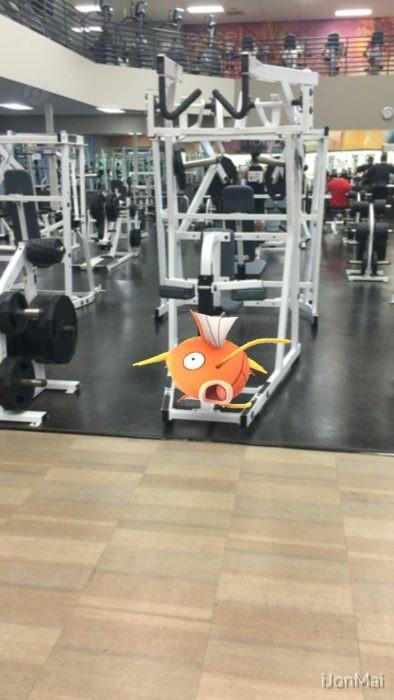 Pokemon Go Magikarp Gimnasio