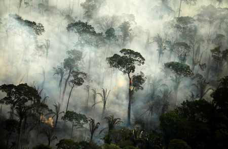 ¿La clave para salvar al Amazonas? Que las multinacionales amenacen con marcharse de Brasil