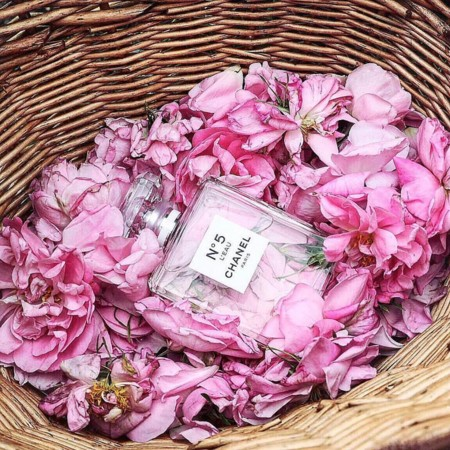 Frasco Entre Rosas