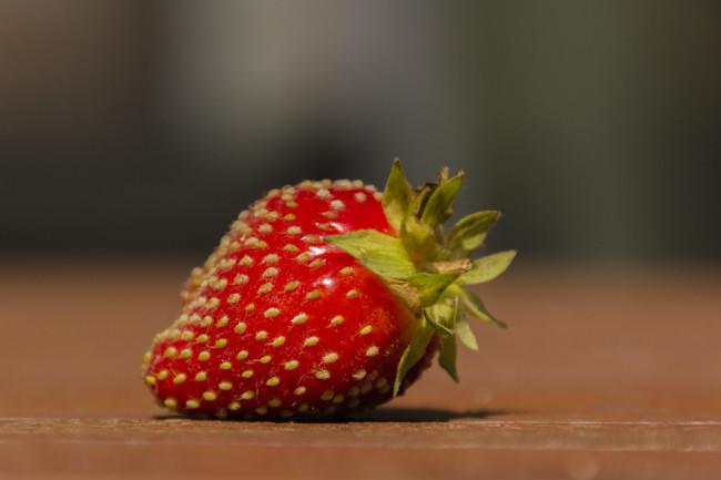 Éstos son algunos de los clones de alimentos que consumes cada día