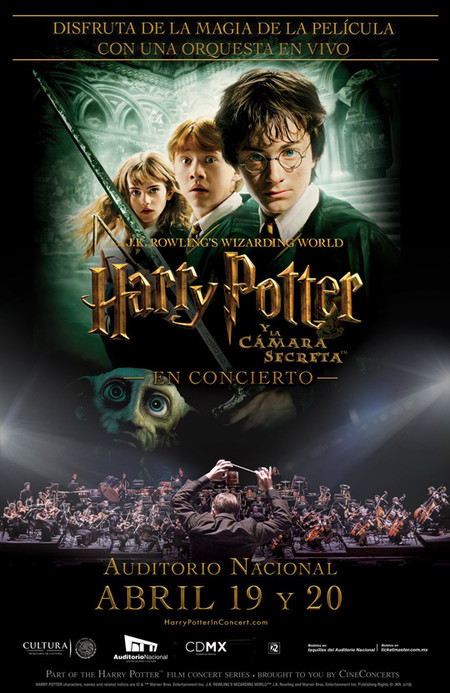 Harry Potter Flyer