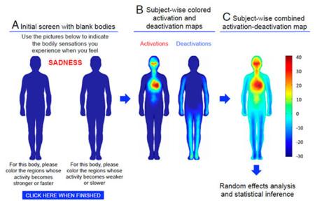 Mapas corporales que reflejan el lugar donde sentimos las emociones