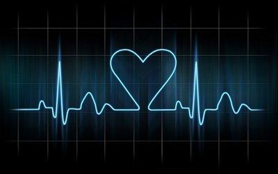 Se crea un software pionero para visionar arterias del corazón