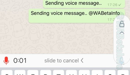 Whatsapp Locked Recordings
