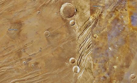 Buena Marte