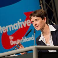 Alternativa para Alemania está reinstalando métodos de los nazis: que los niños se chiven de sus profesores