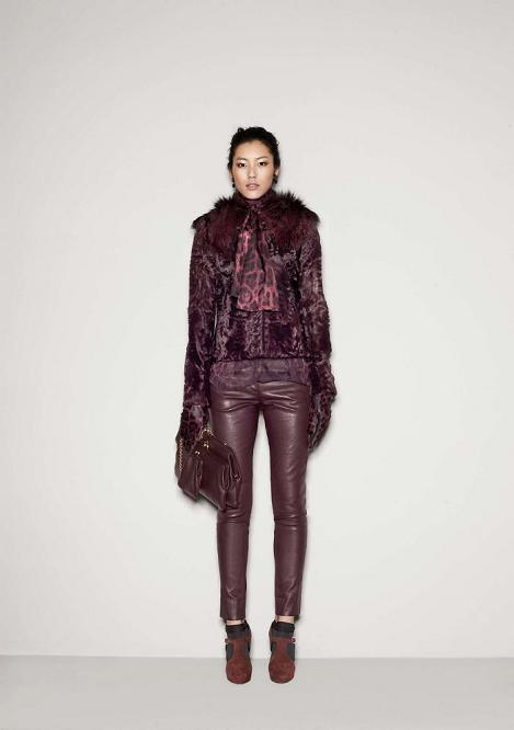 Foto de Dolce & Gabbana Fall 2011 (67/76)