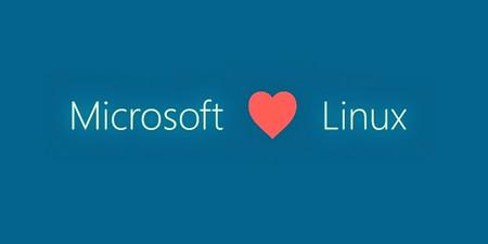 Microsoft abre su famoso sistema de archivos exFAT para que ahora pueda ser usado en Linux de forma nativa
