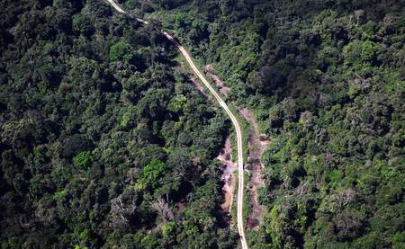 Las carreteras del Amazonas están provocando un desastre medioambiental sin precedentes