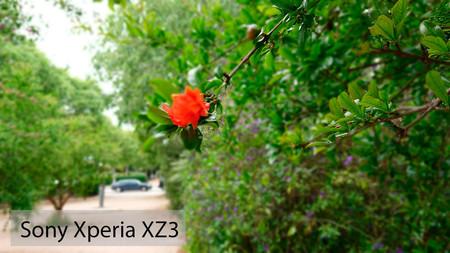 Sony Xperia Xz3 Retrato 03