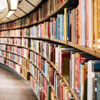 """Internet Archive ya tiene 2 millones de libros gratis para todo el mundo: así es cómo los digitalizan """"de la manera difícil"""""""