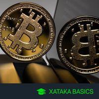Criptomoneda y Wallet: qué son y cuáles son las diferencias