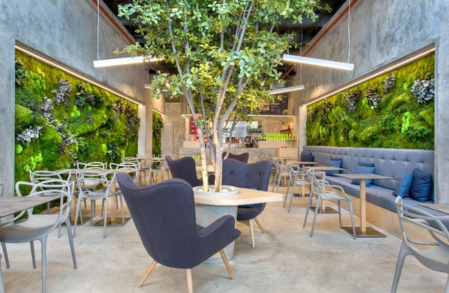 Greenarea y sus jardines creativos dispuestos de las formas más sorprendentes