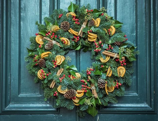 5 plantas para decorar tu casa esta Navidad