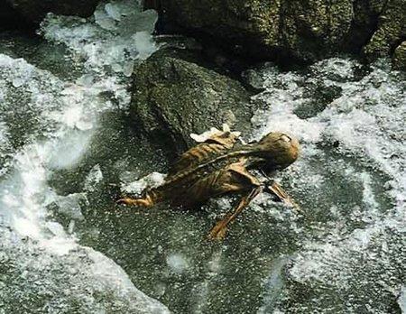 Ötzi, un personaje de 'Sexo en Nueva York' venido de la Edad de Piedra (y II)