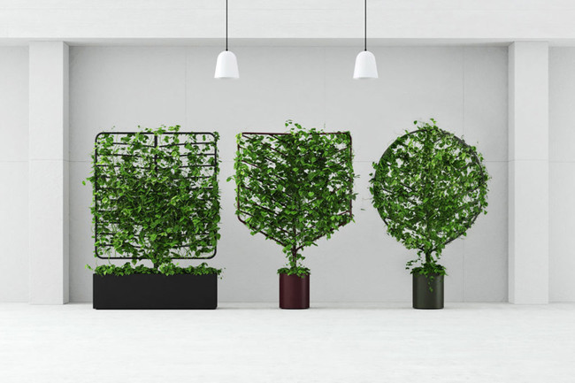 Botanical Planter 00