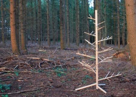 Branch te ayudará a reciclar el árbol de Navidad