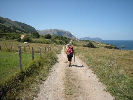 camino-de-santiago-rutas