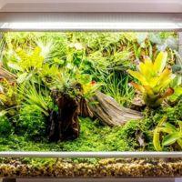Biopod te permite crear un microclima en casa controlado desde la nube
