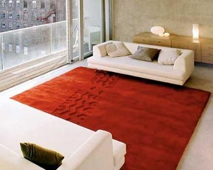 ¿Qué ha pasado con tu alfombra?