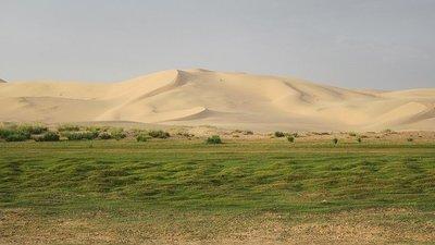 Paisajes impactantes: las dunas de Khongoryn Els, en Mongolia