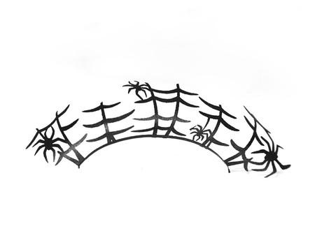 Spider 1024x1024