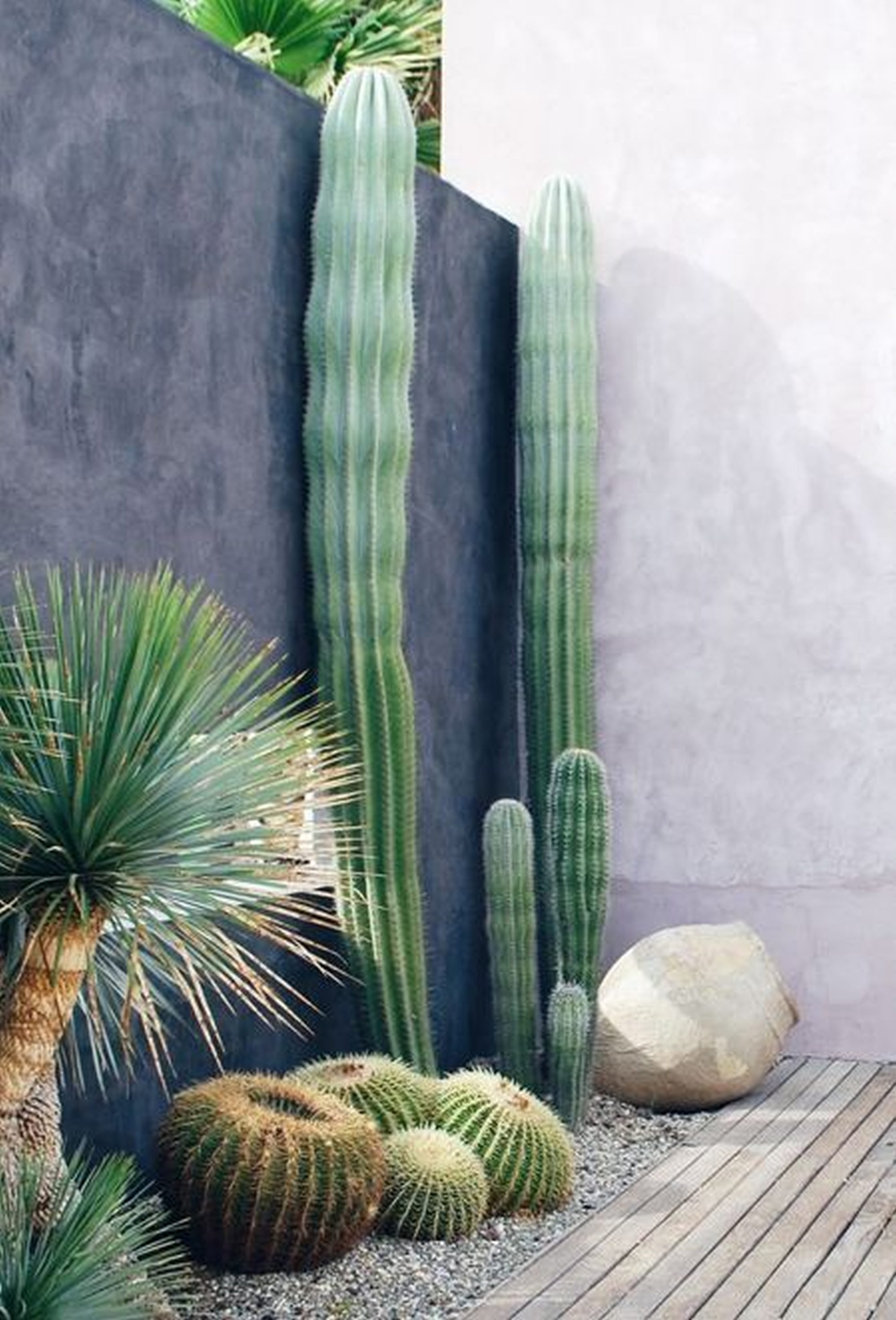 atr vete con los cactus 15 inspiradoras decoraciones para patios y terrazas. Black Bedroom Furniture Sets. Home Design Ideas